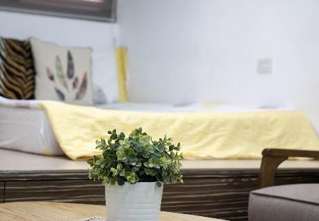 Latest vendita online di articoli per casa orto e giardino for Articoli casa online